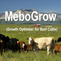 MeboGrow